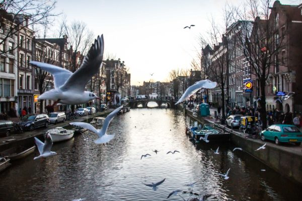 Quartier Rouge, Amsterdam - Clfd Capture | Enzo Habrial